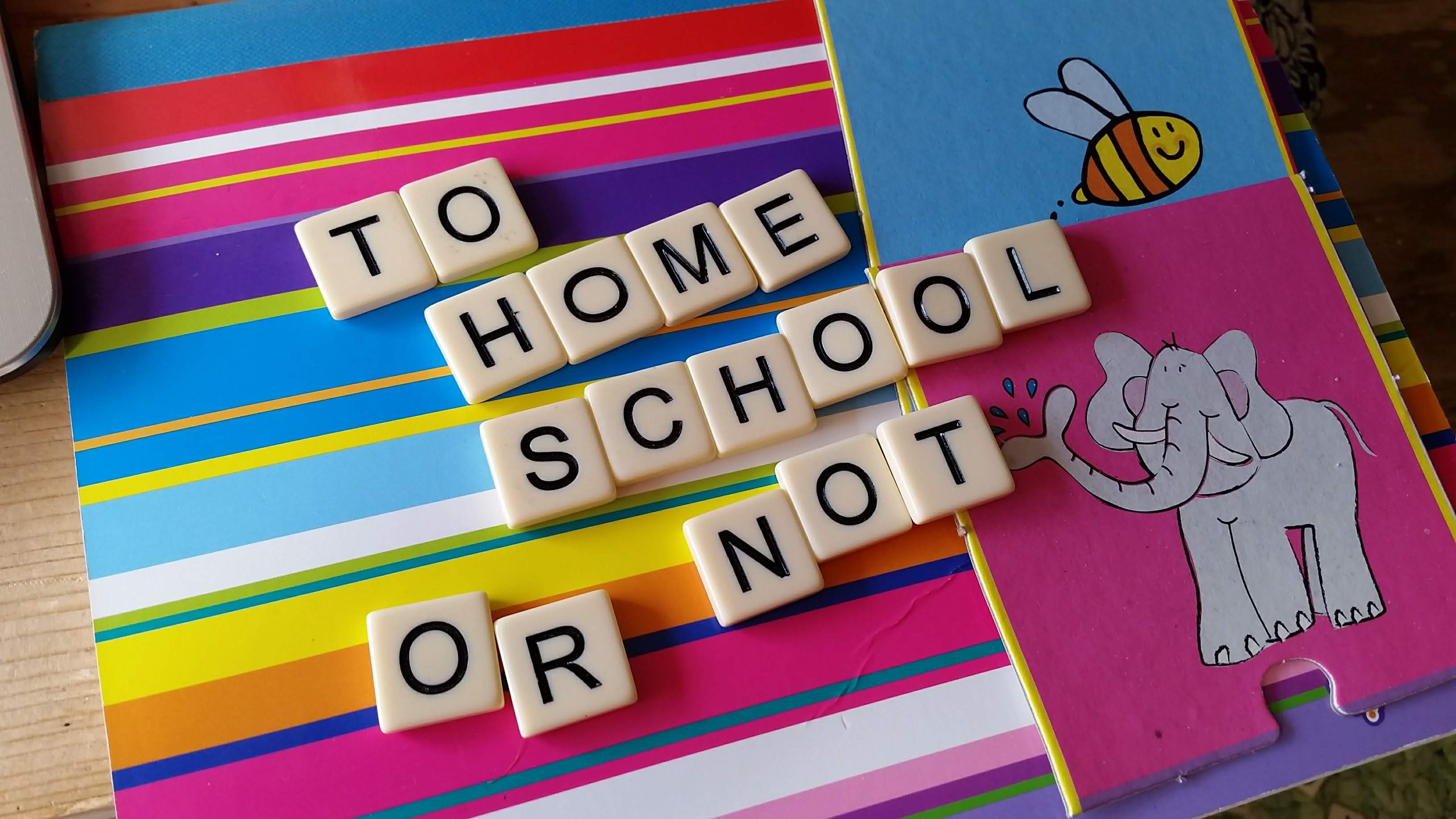 20190414_180537 Is homeschool the right choice?